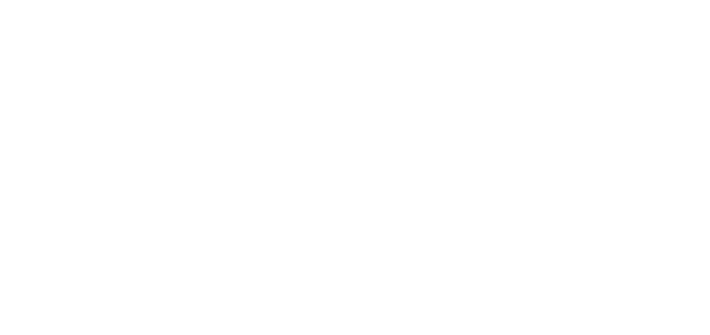 BW Strategies | Logo